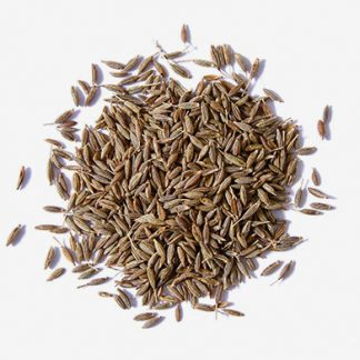 Cumin Seeds Supplier & Exporters in Guntur, India