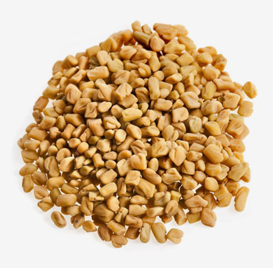 Fenugreek Seeds Supplier & Exporters in Guntur, India