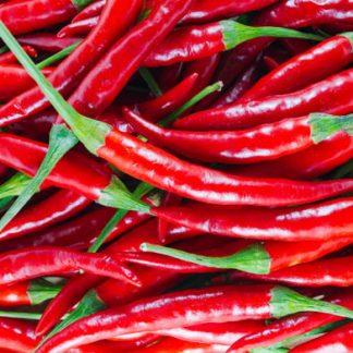 Fresh Red Chilli Exporters India– Pramoda Exim Corporation