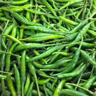 Wholesale Fresh Green Chilli exporter from India