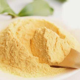 Papaya Leaf Extract Powder in India