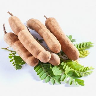 Tamarind Supplier & Exporters in Guntur, India