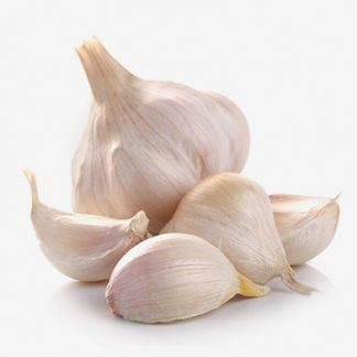 Wholesale Price GARLIC Supplier & Exporters in Guntur, India