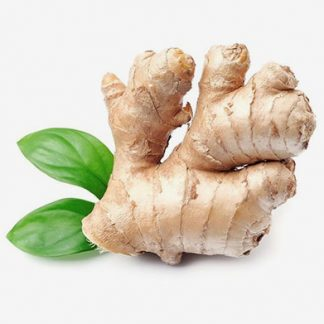 Wholesale Price GINGER Supplier & Exporters in Guntur, India