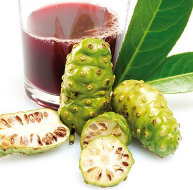 Noni Juice Wholesale Price in India